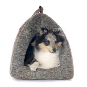 Igloo dog bed