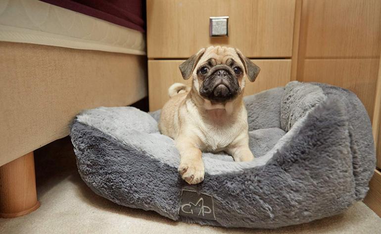 Gor-Pets-Dream-Slumber-Grey-Dog-Bed